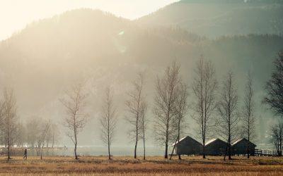 Podkarpacie – warto spędzić tutaj swój urlop